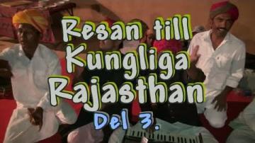 Resan till Rajasthan i Norra Indien, del 3 av 3