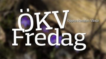 ÖKV Fredag - Rexoria