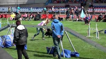 Agility-SM2016, Individuell Large agility