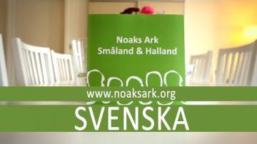 Noaks Ark - Hivtest med snabbsvar (Svenska)